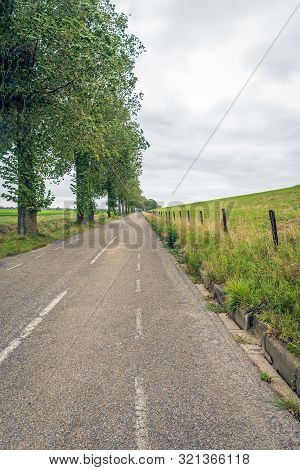 Long Asphalt Road At The Foot Of A Dutch Dike. On One Side Of The Road Is A Row Of Tall Trees And On