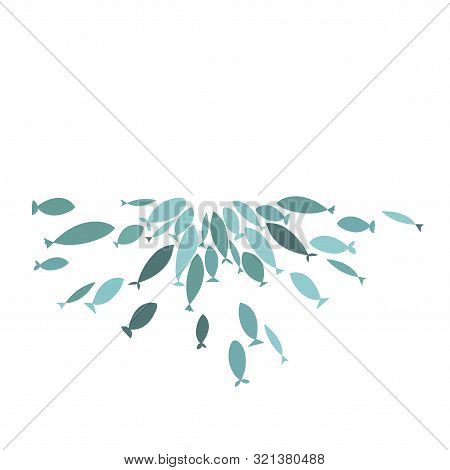 Colored Silhouettes Of Groups Of Sea Fishes. Colony Of Small Fish. Icon With River Taxers. Logo Fish