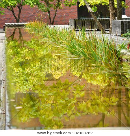 Plant Reflected