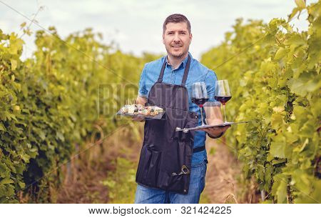 Man In Vineyard Welcoming Tourists With Red Wine And Selection Of Cheeses - Wine Tasting Tours Conce