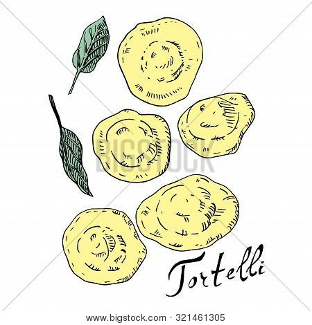 Tortelli And Sage Ink And Color Vector Illustration. Traditional Italian Dish. Type Of Pasta. Classi