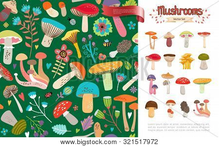 Flat Summer Forest Mushrooms Concept With Beautiful Flowers Leaves Bee Ladybug And Colorful Mushroom
