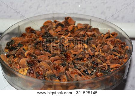 Drying Fruits In Dehydrator. Dehydrate Apricots Photo