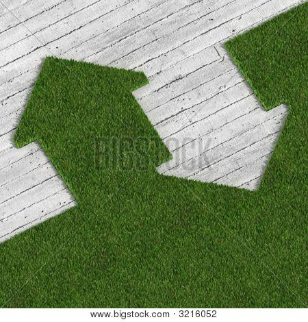 Eco Green House Vs Concrete Traditional Construcion, Metaphor Image 02