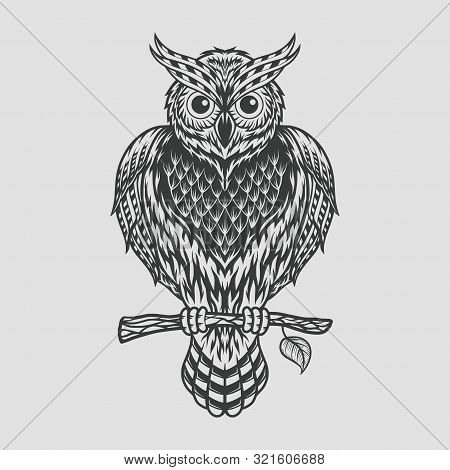 Hand Drawn Owl Sitting On Branch. Engraved Style Illustration For Antistress Coloring Book, Tattoo,