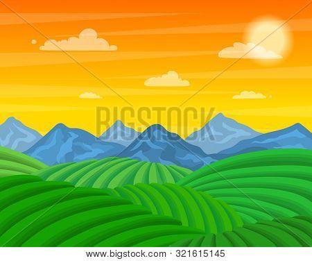 Cartoon Tea Plantation Green Fields Landscape Background Scene Cultivation Concept Flat Design. Vect
