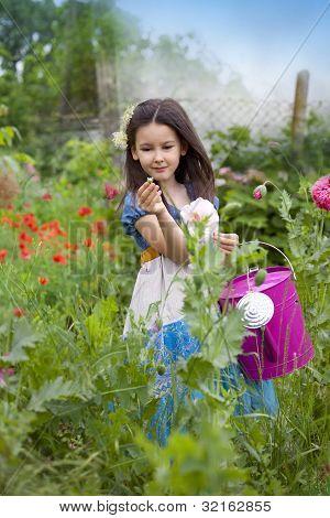 in a garden