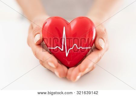 The Woman Is Holding A Red Heart. Concept For Charity, Health Insurance, Love, International Cardiol