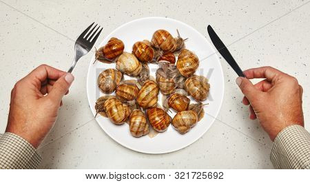 Seafood on white plate for cooking and hands of chef