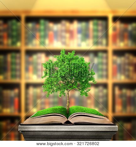 Education Concept. Tree Of Knowledge Grows From The Book Lying On The Pedestal On A Library Backgrou