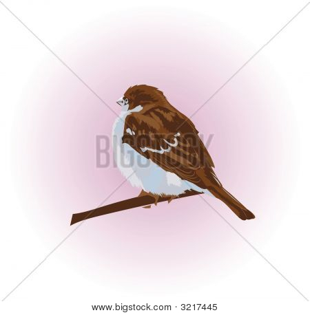 a vector background with sparrow on it poster