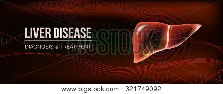 Dark Red Horizontal Social Media Banner For Liver Pain Or Diseases Medical Publications Or Hepatopro