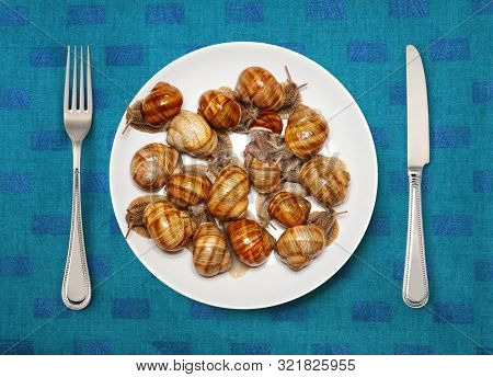 Seafood on white plate for cooking
