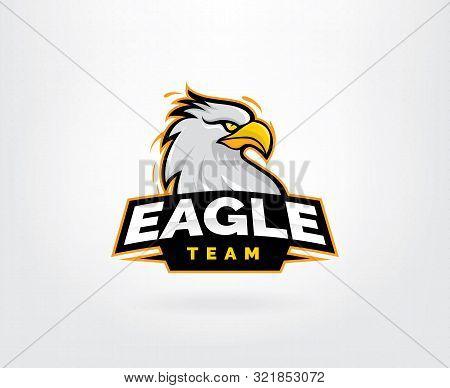 Hawk head mascot vector logo. Eagle esport gaming logo design, Eagles team sport badge design poster