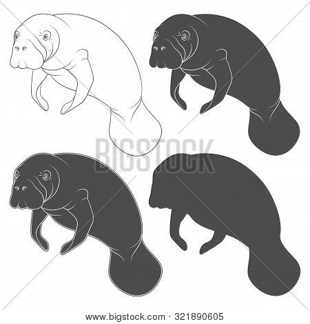 Set Of Black And White Illustrations With Manatee, A Sea Cow. Isolated Vector Objects On A White Bac