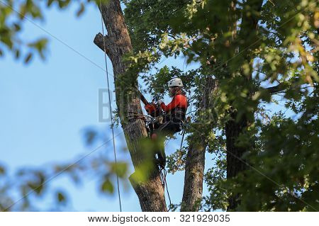 St. Petersburg, Russia - September 12, 2019: A Professional Climber With A Chainsaw, Safety Belts, A