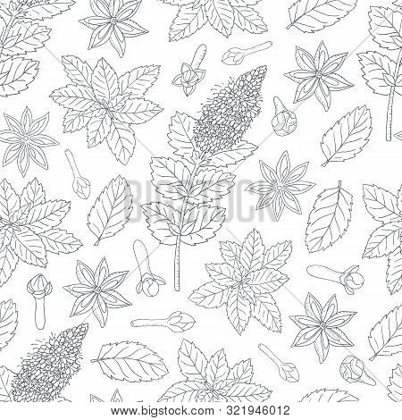 Tea Collection.vector Hand Drawn Seamless Pattern With Different Ingredients For A Nice Tea Drinking