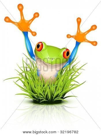 Little tree frog on reflective grass