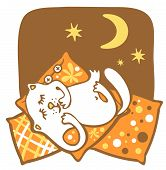 The amusing white cat sleeps on pillows on a background of the night sky. poster