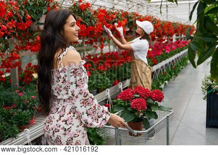 Side View Of Young Brunette Woman And Young Worker Choosing Beautiful Red And Different Colors In Mo