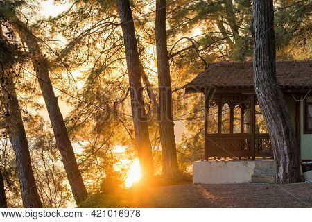 Small wooden bungalow house in the forest on the lake shore at sunrise. Retreat house into the wild quiet place