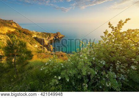 Sunset on sea cliffs. Beautiful spring nature landscape. Relax composition.