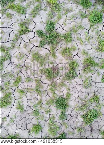 Cracked Clay Ground Into The Dry Season , Effects Of Global Warming. Cracks Of The Dried Soil In Ari