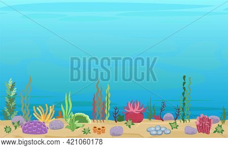 Sandy Bottom Of The Reservoir. Blue Transparent Clear Water. Sea Ocean. Underwater Landscape With Pl