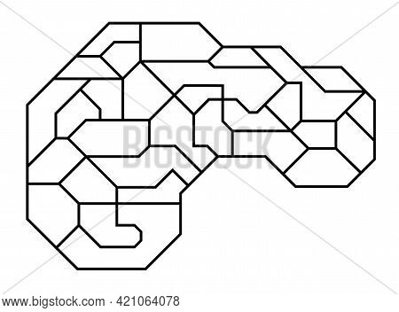 Brain Side View Outline Graphic. Sci-fi Design. Divided Into Sections With Space For Text Or Illustr