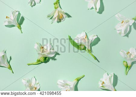Fresh White Flowers On A Green Background.