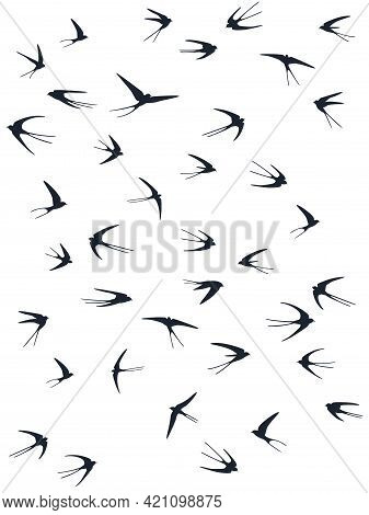 Flying Swallow Birds Silhouettes Vector Illustration. Nomadic Martlets Flock Isolated On White. Swif