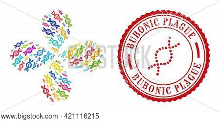 Genetic Molecule Colorful Explosion Burst, And Red Round Bubonic Plague Corroded Stamp Print. Geneti