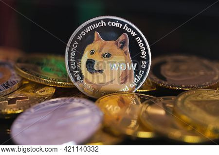Dogecoin Doge Group Included With All Crypto Currency Coin Bitcoin, Ethereum Eth, Binance Coin Symbo