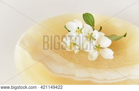 A Beautiful Sprig Of Apple Tree With White Flowers On An Onyx Plate. Abstract Spring Composition. Cl