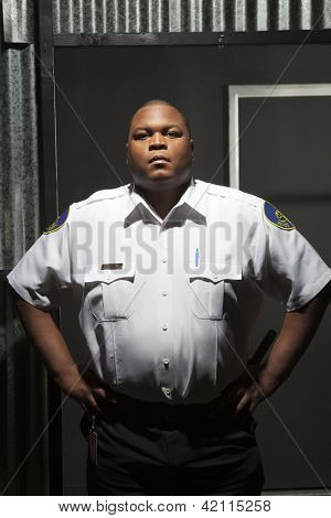Security guard standing with hands on hips