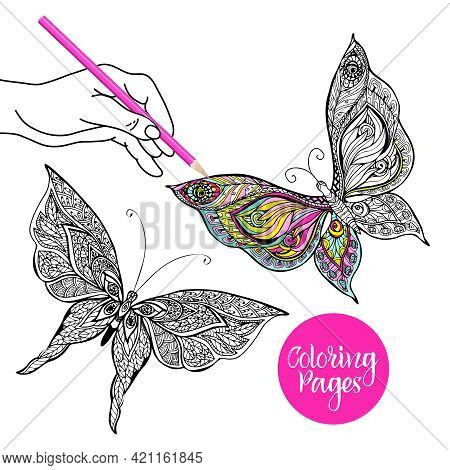 Human Hand Coloring Decorative Butterfly With Colored Pencil Vector Illustration