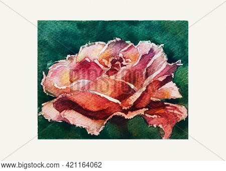 Red Rose On A Green Background. Watercolor Drawing On Grain Paper
