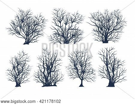 Set Of Bare Trees. Thickets. Crown With Branches. Bushes Close-up. Flat Cartoon Style. Winter Season