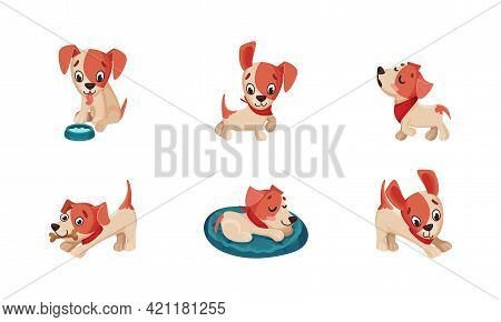 Funny Jack Russell Terrier Character Wriggling Tail, Walking And Sleeping Vector Set