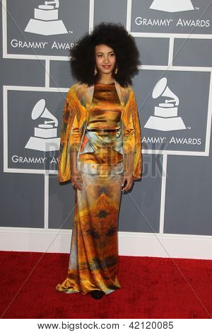 LOS ANGELES - FEB 10:  Esperanza Spalding arrives at the 55th Annual Grammy Awards at the Staples Center on February 10, 2013 in Los Angeles, CA