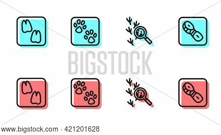 Set Line Bird Footprint, Camel Paw, Paw And Human Footprints Shoes Icon. Vector