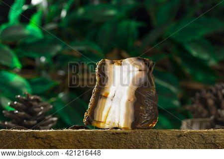 Barite Mineral Specimen Stone Rock Geology Gem Crystal
