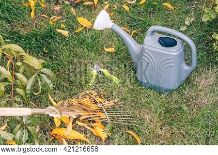 Cleaning A Lawn With A Rake In An Autumn. Watering Can, A Pruner And Green Grass On The Background.