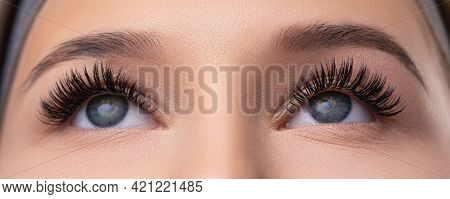 Close Up Portrait Of Woman Face. Young, Beautiful Girl With Fresh Soft Skin Combing Long Black Eyela