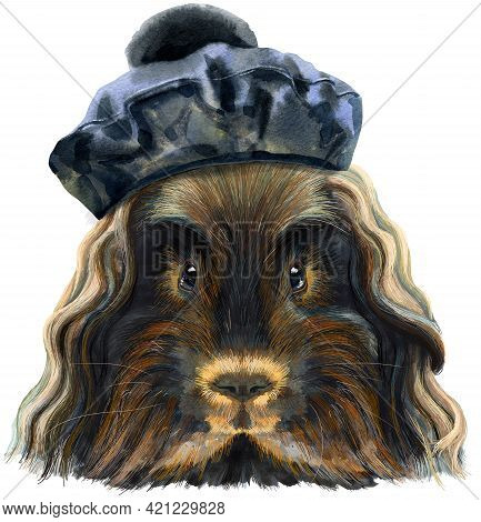 Cute Cavy In Black Beret With Pom-pom. Guinea Pig For T-shirt Graphics. Watercolor Merino Guinea Pig