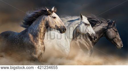 Three Horses Running On The Horizon, Light Background