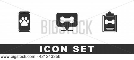 Set Veterinary Clinic, Dog Bone And Clinical Record Pet Icon. Vector