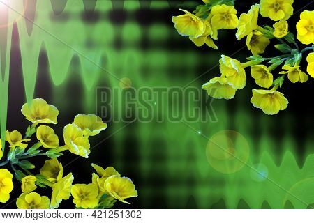 A Bright, Contrasting Postcard Template With Green Streaks And Yellow Flowers At The Edges And A Bla