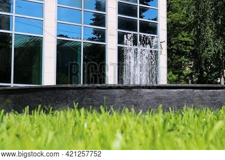 Tall Grass In Front Of A Building