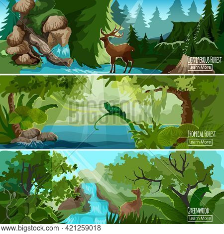Greenwood Tropical Forest Landscape 3 Horizontal Banners Set With Lizard Deer And Conifers Abstract
